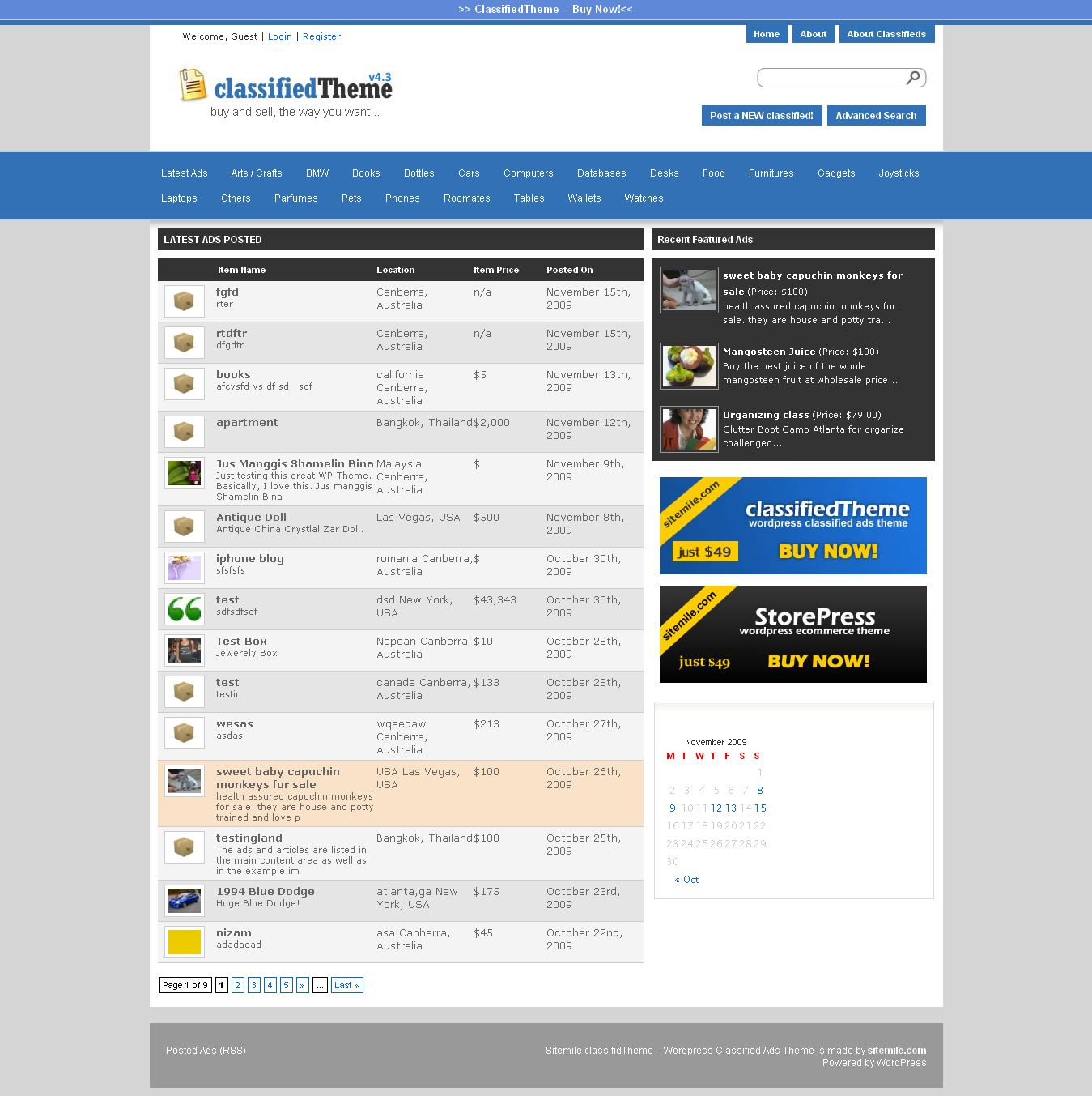 WordPress Classified Ads Theme - Develop a Classified website using ...