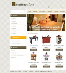 PRS010004 – Furniture Store