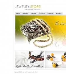 ZEN020031 – Jewelry Store