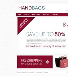 CST010009 – HandBag Store
