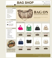 ZEN020040 – Bag Store