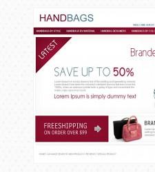 OSC010010 – HandBag Store