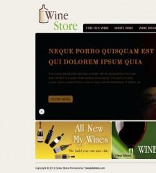 OSC030059 – Wine Store