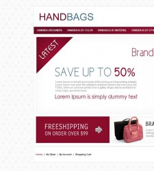 VTM010011 – HandBag Store