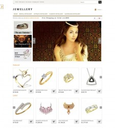 OPC060136 – Jewelry Store