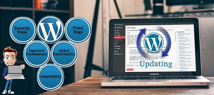 importance of wordpress update